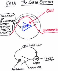 Lovelock, scienziato e battitore libero, spiega perché Gaia non ci sopporterà in eterno (da Il Messaggero del 26aprile)